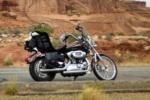The natural form sheepskin on my 2009 1200C Sportster.  I place my t-bag on the passenger pad and drape the extra length over it.  Extremely comfortable backrest! This picture is from our 4,300 + cross country ride in 2016.  It was my pillow in the tent at night!